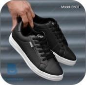 کفش حامد 2